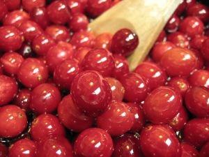 biologische_cranberrys Cranberry's tegen blaasontsteking