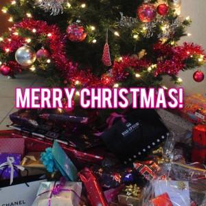 merry-christmas-300x300 Diary: Feestdagen enzo!