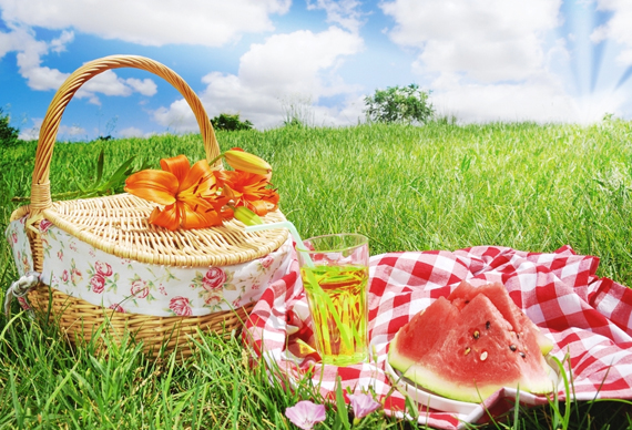picknick-spring-lente The Beauty of the Spring Season