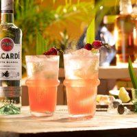 bacardi_mojito_fruit_kopen_maken-200x200 Tips voor een cocktailparty